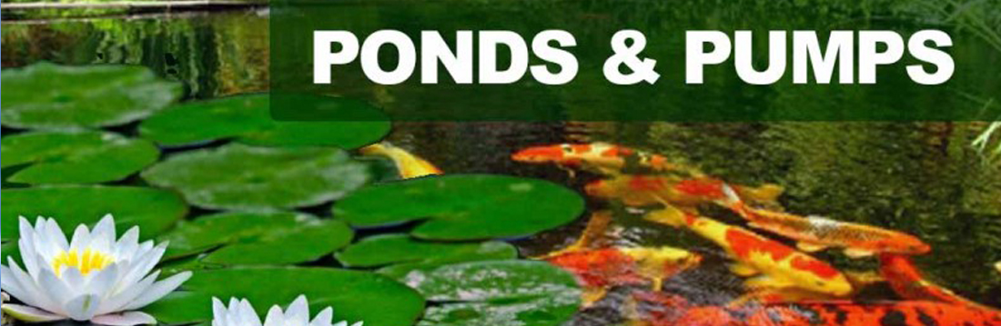 Ponds and Pumps