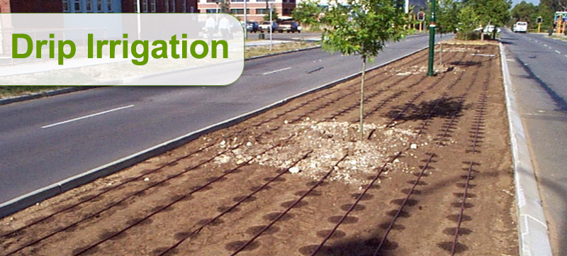 Drip-irrigation-medium-strip
