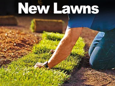 How to get a Watering Exemption for New Lawns