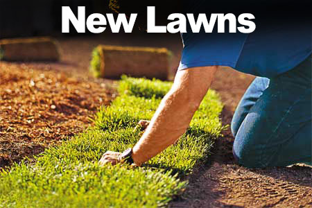 How to get a Watering Exemption for New Lawns and Gardens