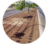 Irrigation Watering Systems Perth All Suburbs Government Contracts