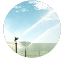 Irrigation Watering Systems Perth Agricultural solutions