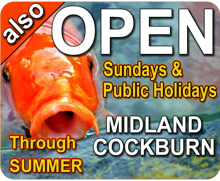 The Watershed Midland & Cockburn Stores Open Sundays and most Public Holidays